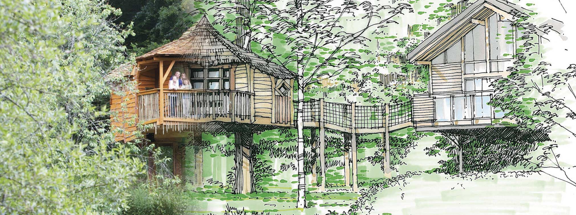 Treehouse development