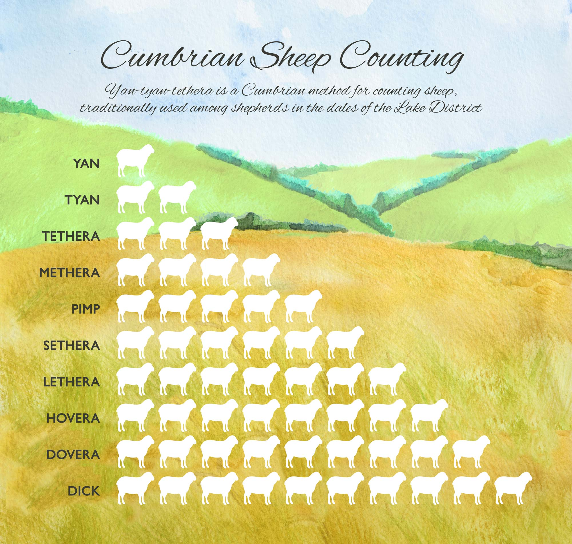Sheep counting info panel